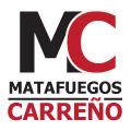Mario Carreño Ingeniero