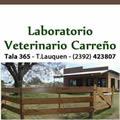 Laboratorio Veterinario Carreño Martinelli